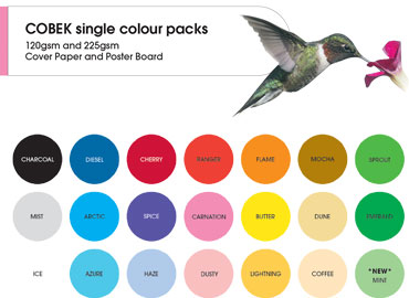 Cobek 5 Colour Mixed Pack 120gsm