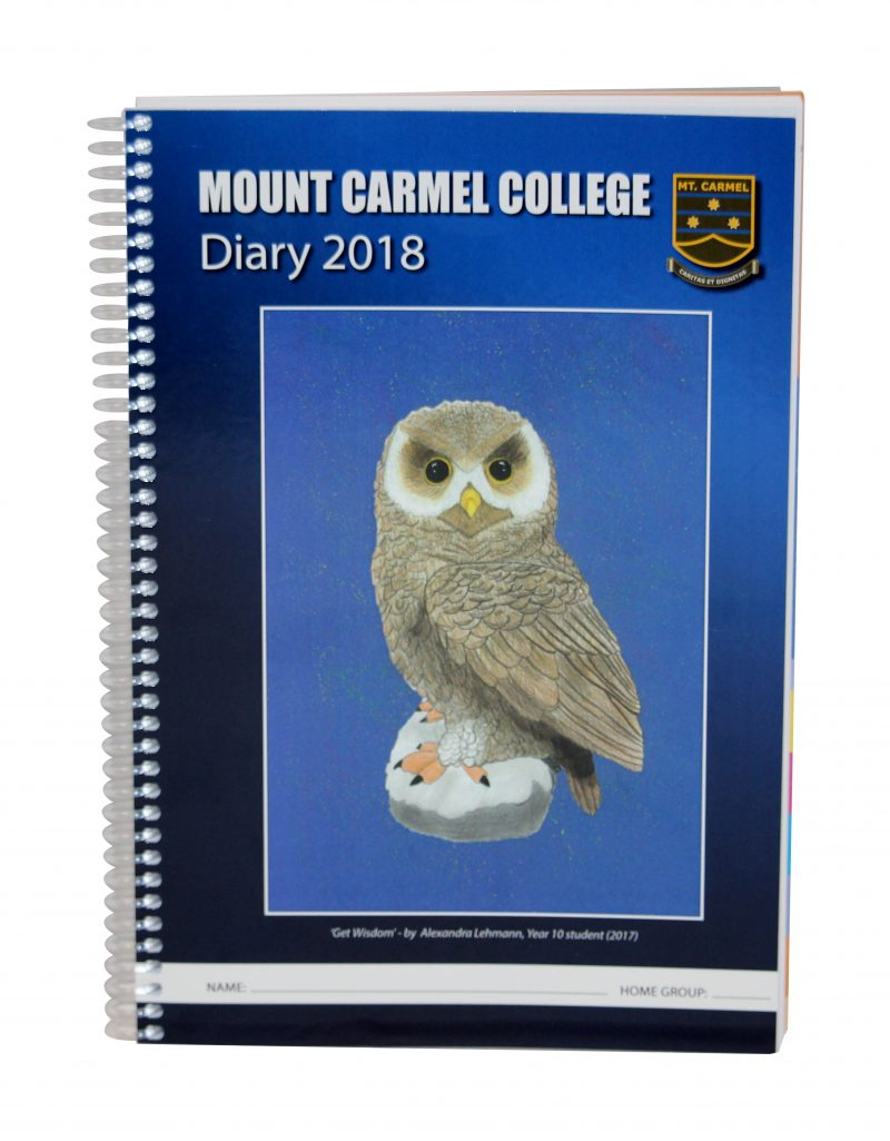 Mount Carmel College Student Diary